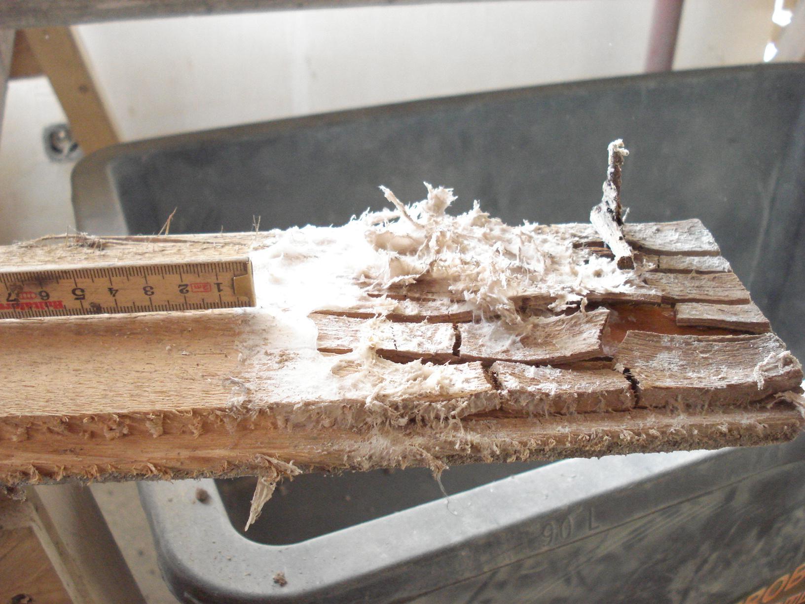 Neufassung der Holzschutznorm DIN 68800-4