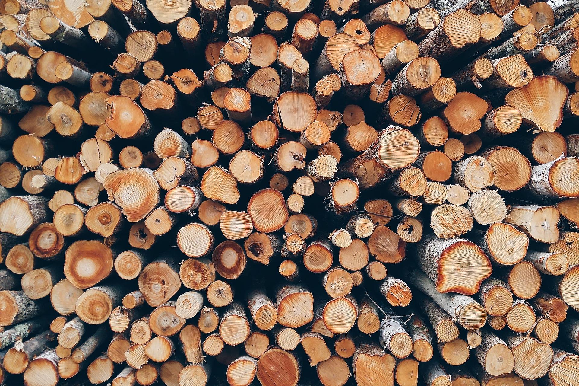 Preisanstieg und Verfügbarkeit von Holz und Holzprodukten